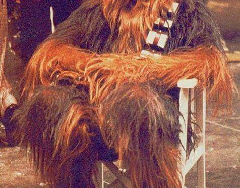 Great Moments in Photography: a striking Wookiee downs tools during the Death Star construction, 5BBY